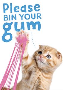 Kitten Humor